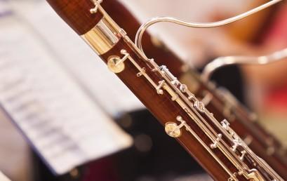 Venerdì 20 Maggio 2016 ore 21,00 – I Concerti per Fagotto e orchestra di A. Vivaldi
