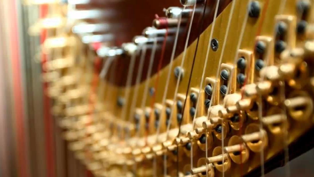 9 Giugno 2017 ore 18:00, Concerto degli allievi della Scuola di Arpa